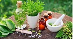 آشنایی با بهترین گیاهان دارویی